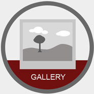 Image Gallery software for Your Responsive Website